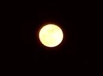 moon0421.jpg
