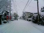 snowed.jpg
